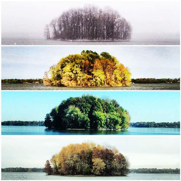 diaforetiko.gr : epoxibest1 Οι τέσσερις εποχές σε μια εικόνα!