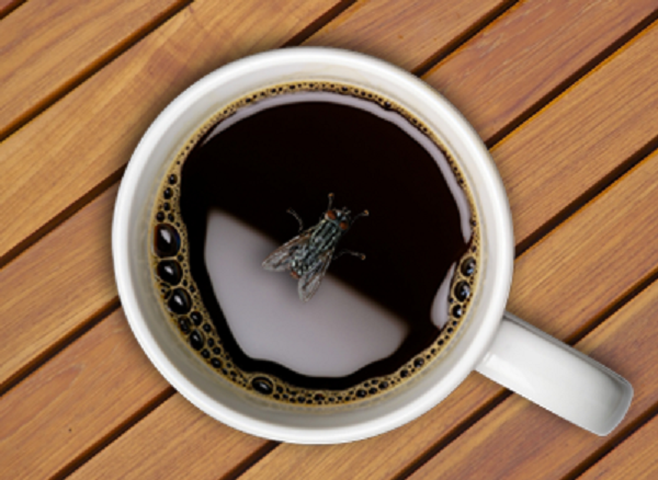 diaforetiko.gr : μυγα στον καφε Ποια είναι η αντίδραση κάθε λαού εάν πέσει μια μύγα στον καφέ του;