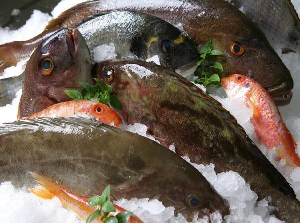 υπηρεσία γνωριμιών για ψάρια