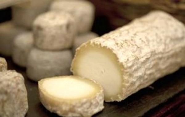 diaforetiko.gr : ImageHandler 600x380 ΑΝΑΤΡΙΧΙΑΣΤΙΚΟ: Τυρί από ανθρώπινο γάλα και προνύμφες μύγας... Αυτά είναι τα πιο παράξενα είδη τυριού στον κόσμο!