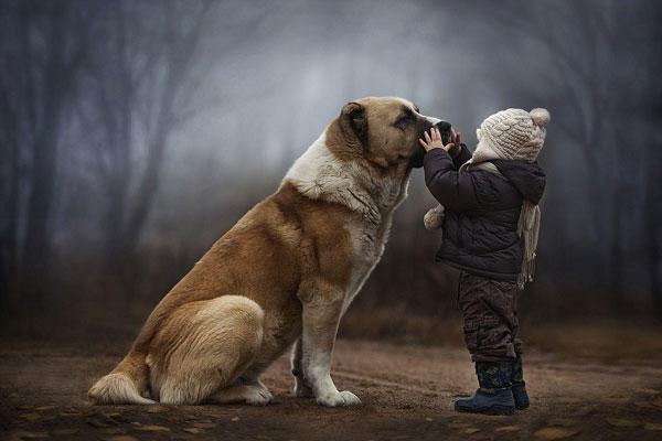 diaforetiko.gr : vanya3 Τα δύο αδελφάκια που είναι δεμένα με τα ζώα