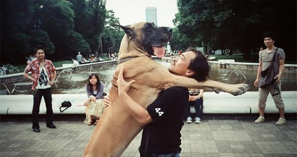 diaforetiko.gr : 104 600x318 26 αξιολάτρευτα σκυλιά στην αγκαλιά του αφεντικού τους! Τρυφερές στιγμές…