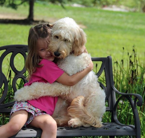 diaforetiko.gr : 223 600x569 26 αξιολάτρευτα σκυλιά στην αγκαλιά του αφεντικού τους! Τρυφερές στιγμές…