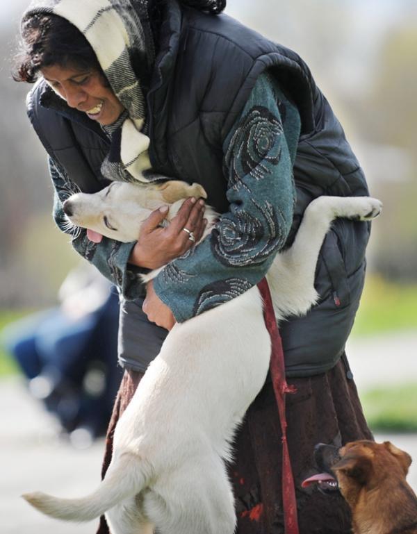 diaforetiko.gr : 612 600x769 26 αξιολάτρευτα σκυλιά στην αγκαλιά του αφεντικού τους! Τρυφερές στιγμές…