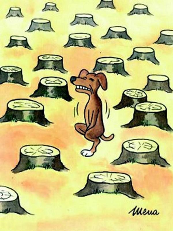 diaforetiko.gr : caricatures 8 Γελοιογραφίες με… νόημα! Σκίτσα με χιούμορ που θα σας προβληματίσουν…