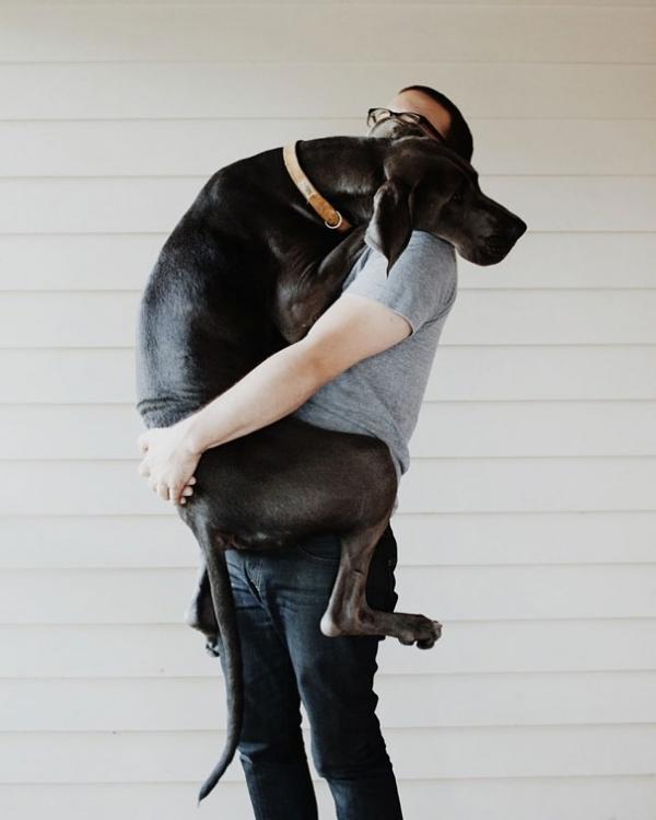 diaforetiko.gr : cute dogs hugging humans 101 600x749 26 αξιολάτρευτα σκυλιά στην αγκαλιά του αφεντικού τους! Τρυφερές στιγμές…