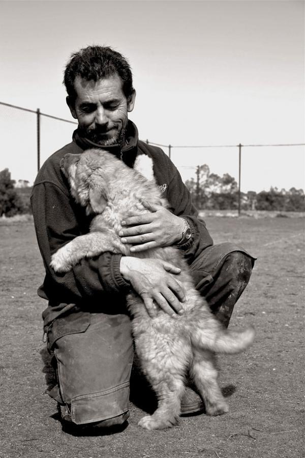 diaforetiko.gr : cute dogs hugging humans 14 600x899 26 αξιολάτρευτα σκυλιά στην αγκαλιά του αφεντικού τους! Τρυφερές στιγμές…