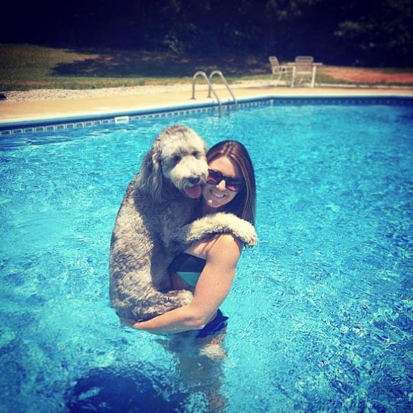 diaforetiko.gr : cute dogs hugging humans 7 600x600 26 αξιολάτρευτα σκυλιά στην αγκαλιά του αφεντικού τους! Τρυφερές στιγμές…