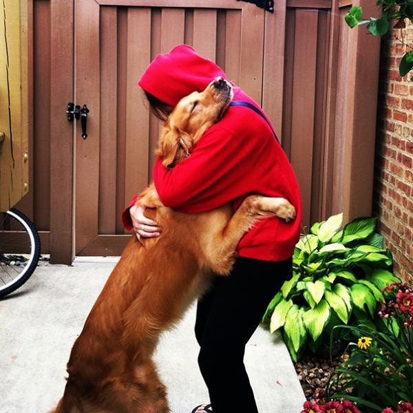 diaforetiko.gr : cute dogs hugging humans 92 600x600 26 αξιολάτρευτα σκυλιά στην αγκαλιά του αφεντικού τους! Τρυφερές στιγμές…