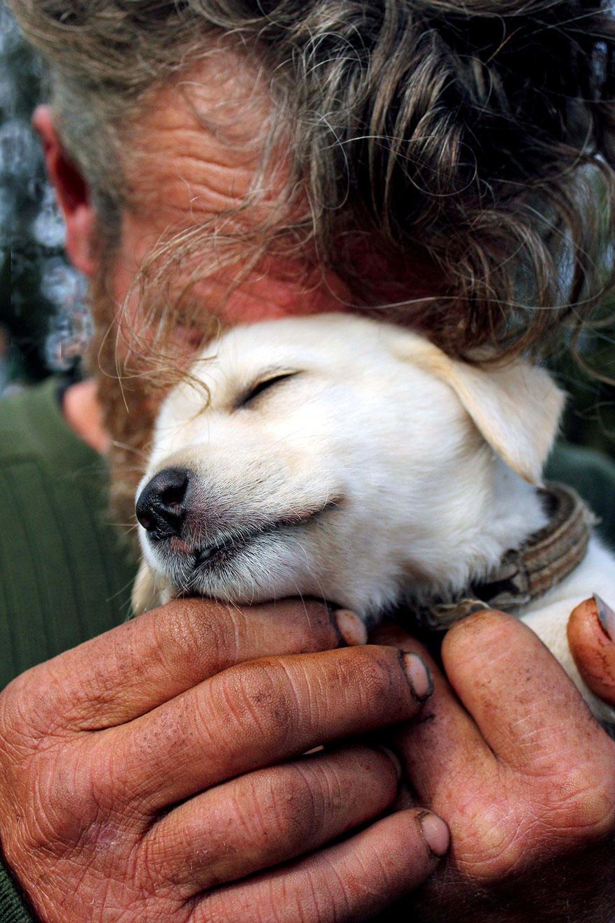 diaforetiko.gr : homeless dogs and owners 10 Φωτογραφίες που αποδεικνύουν πως τα σκυλιά σε αγαπούν όσο φτωχός κι αν είσαι
