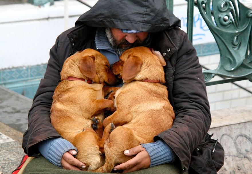 diaforetiko.gr : homeless dogs and owners 12 Φωτογραφίες που αποδεικνύουν πως τα σκυλιά σε αγαπούν όσο φτωχός κι αν είσαι