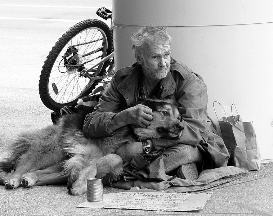 diaforetiko.gr : homeless dogs and owners 16 Φωτογραφίες που αποδεικνύουν πως τα σκυλιά σε αγαπούν όσο φτωχός κι αν είσαι