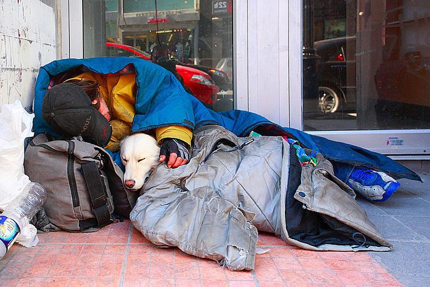 diaforetiko.gr : homeless dogs and owners 2 Φωτογραφίες που αποδεικνύουν πως τα σκυλιά σε αγαπούν όσο φτωχός κι αν είσαι