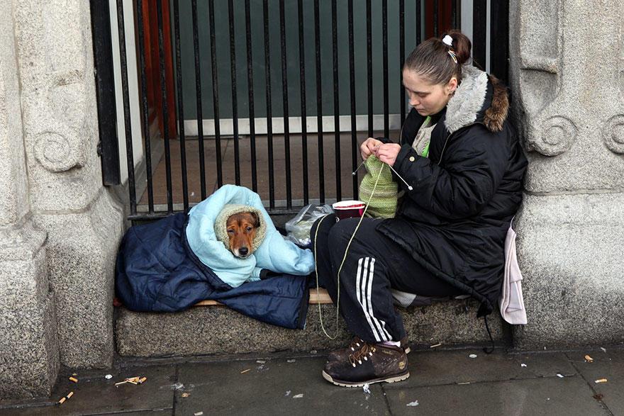 diaforetiko.gr : homeless dogs and owners 28 Φωτογραφίες που αποδεικνύουν πως τα σκυλιά σε αγαπούν όσο φτωχός κι αν είσαι