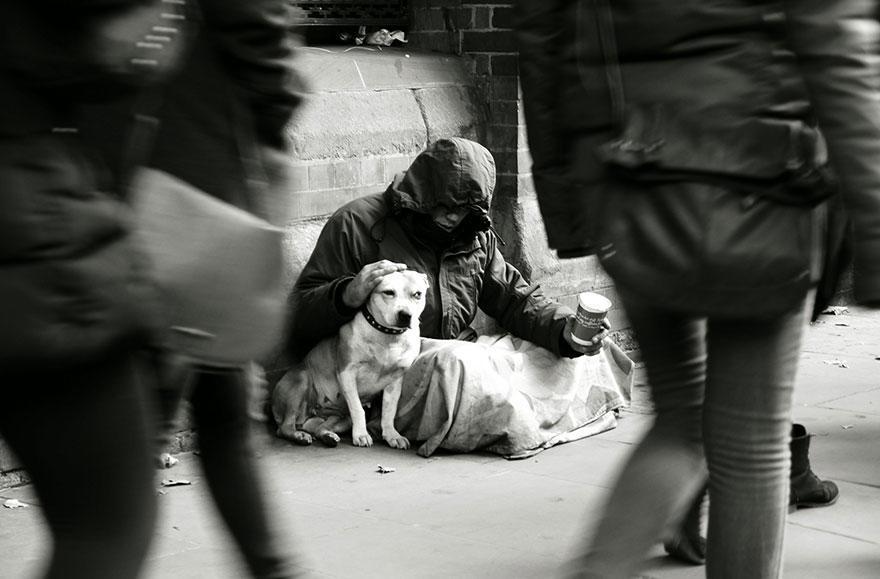 diaforetiko.gr : homeless dogs and owners 6 Φωτογραφίες που αποδεικνύουν πως τα σκυλιά σε αγαπούν όσο φτωχός κι αν είσαι
