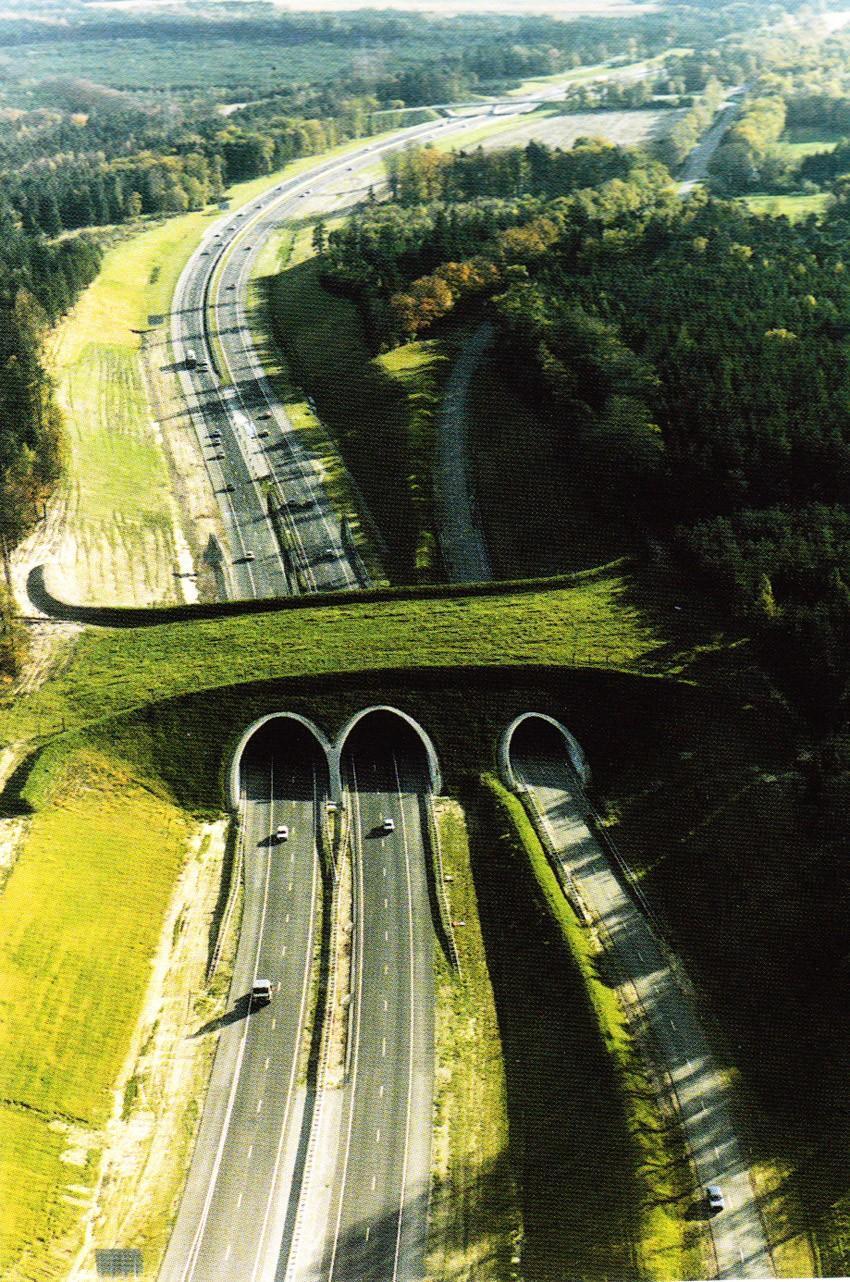 diaforetiko.gr : 3112 934x 35 εκπληκτικές γέφυρες που αποτελούν τον ορισμό του αρχιτεκτονικού αριστουργήματος!  Θαύματα σύγχρονης αρχιτεκτονικής που θα σας μαγέψουν…