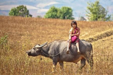 diaforetiko.gr : Myanmarsxoleio Όταν ο δρόμος για το σχολείο είναι μια μεγάλη περιπέτεια.