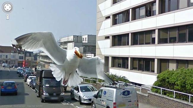 Dating στο Google Street View εικόνες Πώς μπορώ να συνδέσω πολλαπλά ηχεία σε έναν δέκτη