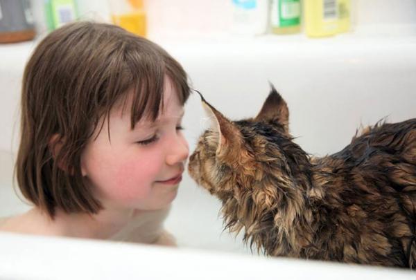 thula-therapy-cat-autistic-artist-iris-grace-14