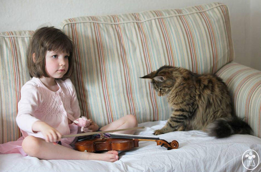 thula-therapy-cat-autistic-artist-iris-grace-9