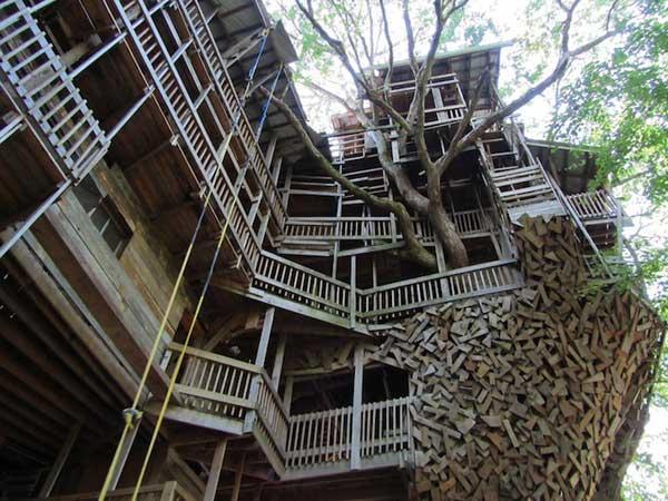 diaforetiko.gr : Tree House Stands 97 Feet High 2 Το μεγαλύτερο δεντρόσπιτο στον κόσμο έχει 80 δωμάτια και μπήκε στο βιβλίο Γκίνες