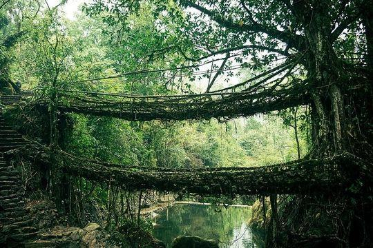 diaforetiko.gr : india Φοβερές εικόνες: Οι 20 ωραιότερες γέφυρες του κόσμου! Ανάμεσα τους και μια ελληνική !!