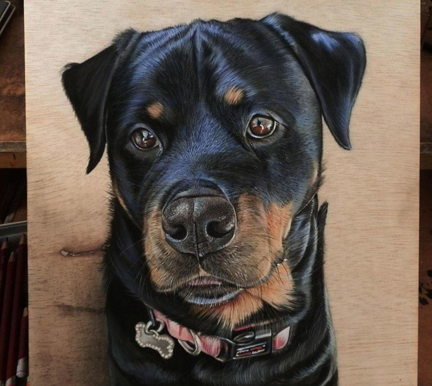 diaforetiko.gr : photorealistic drawing wood ivan hoo 7 Νομίζετε πως βλέπετε τη φωτογραφία ενός σκύλου;;; Για προσέξτε πιο καλά!