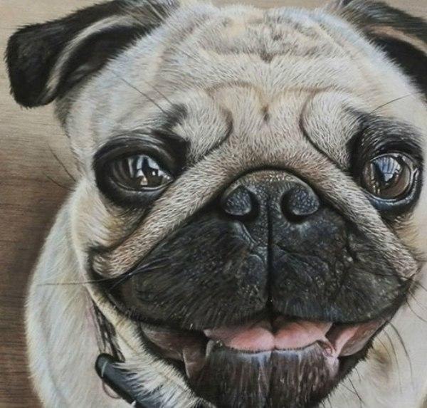 diaforetiko.gr : photorealistic drawing wood ivan hoo 1 Νομίζετε πως βλέπετε τη φωτογραφία ενός σκύλου;;; Για προσέξτε πιο καλά!