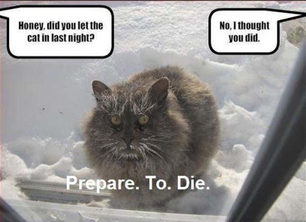 Ξέρεις ότι κάνει πολύ κρύο, όταν... (11)