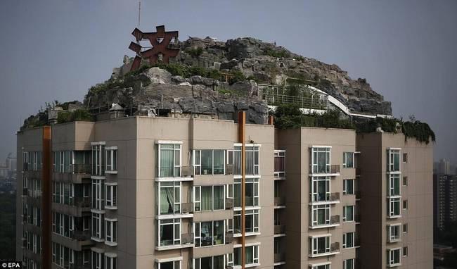 diaforetiko.gr : zen 11 Έφτιαξε... βουνό στο ρετιρέ της πολυκατοικίας του! Ένα ασυνήθιστο ησυχαστήριο στον 26ο όροφο !!!