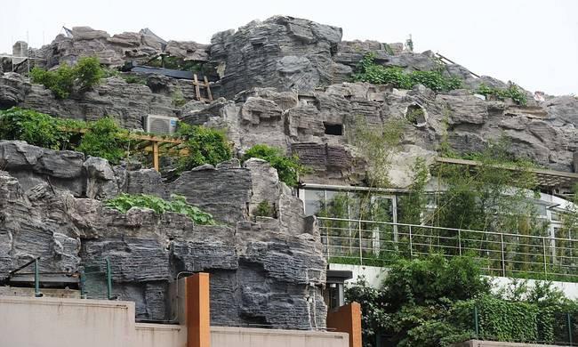 diaforetiko.gr : zen 15 Έφτιαξε... βουνό στο ρετιρέ της πολυκατοικίας του! Ένα ασυνήθιστο ησυχαστήριο στον 26ο όροφο !!!