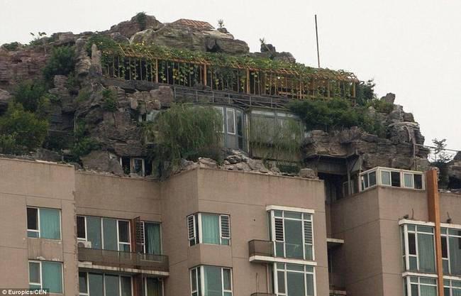 diaforetiko.gr : zen 20 Έφτιαξε... βουνό στο ρετιρέ της πολυκατοικίας του! Ένα ασυνήθιστο ησυχαστήριο στον 26ο όροφο !!!
