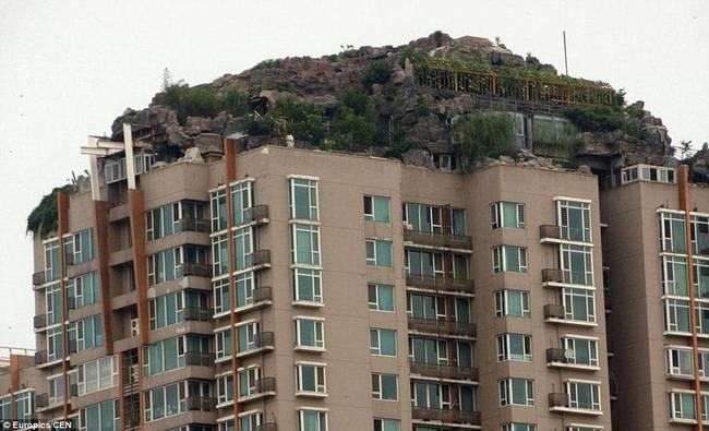 diaforetiko.gr : zen 3 Έφτιαξε... βουνό στο ρετιρέ της πολυκατοικίας του! Ένα ασυνήθιστο ησυχαστήριο στον 26ο όροφο !!!