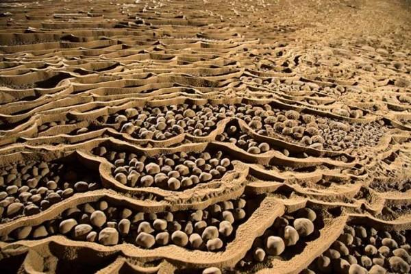 9cuev 600x400 ΑΠΙΣΤΕΥΤΟ: Ένας αγρότης είδε μια τρύπα σε έναν βράχο Αυτό που υπάρχει στο εσωτερικό άφησε άφωνο όλο τον πλανήτη!