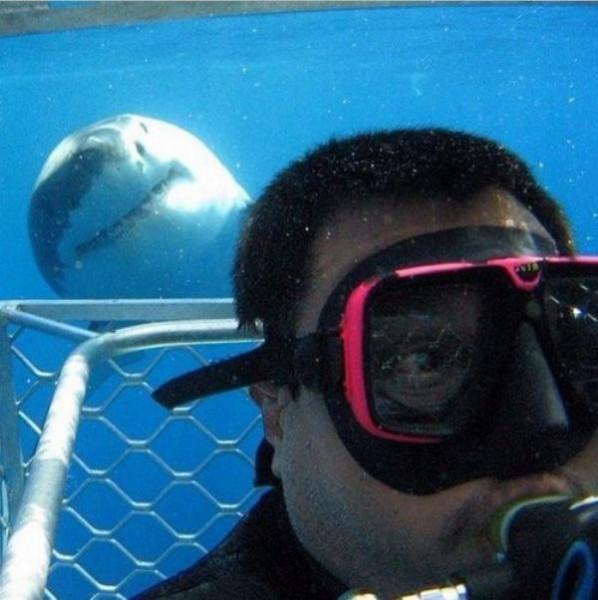 diaforetiko.gr : selfie ipopgr 12 598x600 Τέτοιες selfies σίγουρα ΔΕΝ έχετε ξαναδεί! Με την 5η θα μείνετε στήλη άλατος!