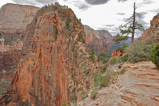 diaforetiko.gr : Zion National Park 13 Ο πιο επικίνδυνος δρόμος του πλανήτη, έχει την πιο εντυπωσιακή θέα
