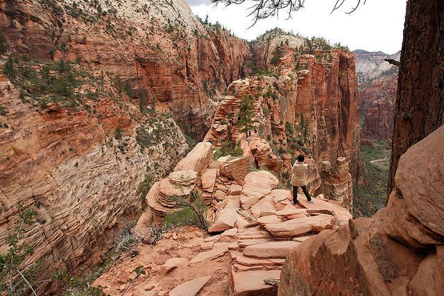 diaforetiko.gr : Zion National Park 14 Ο πιο επικίνδυνος δρόμος του πλανήτη, έχει την πιο εντυπωσιακή θέα