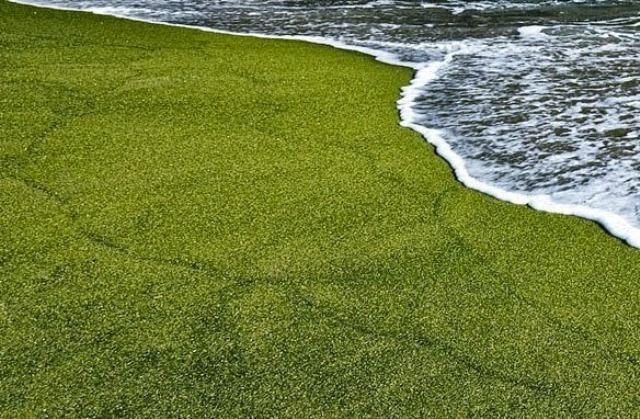 fanpage.gr : beach3c 15 Παράξενες παραλίες που υπάρχουν στον κόσμο