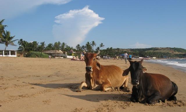 fanpage.gr : beach7c 15 Παράξενες παραλίες που υπάρχουν στον κόσμο