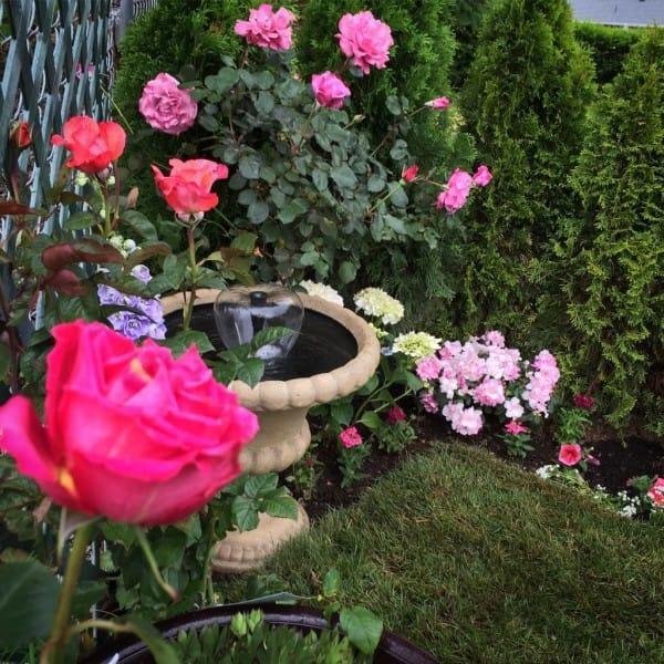 diaforetiko.gr : 139 600x600 Μεταμόρφωσε την βαρετή αυλή της σε ένα μυστικό κήπο που μοιάζει να ξεπήδησε από σελίδες παραμυθιών! ΕΚΠΛΗΚΤΙΚΗ ΙΔΕΑ !!!