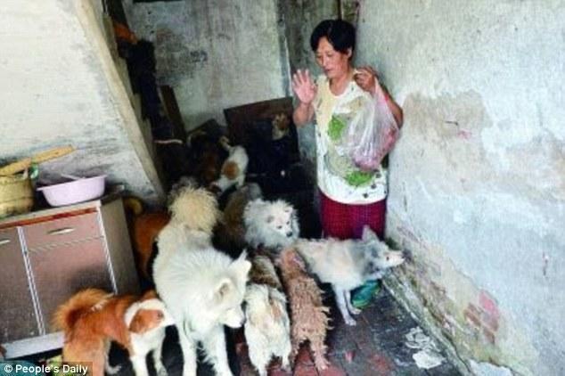 diaforetiko.gr : 29BC1DB100000578 3129642 image a 4 1434626315361 Η συνταξιούχος που αγοράζει σκυλιά για να τα σώσει από τη σφαγή στο «Φεστιβάλ Σκυλίσιου Κρέατος» της Κίνας!