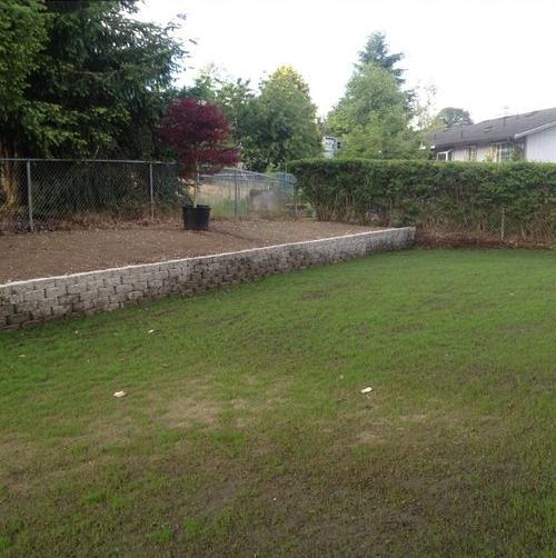 diaforetiko.gr : 321 Μεταμόρφωσε την βαρετή αυλή της σε ένα μυστικό κήπο που μοιάζει να ξεπήδησε από σελίδες παραμυθιών! ΕΚΠΛΗΚΤΙΚΗ ΙΔΕΑ !!!