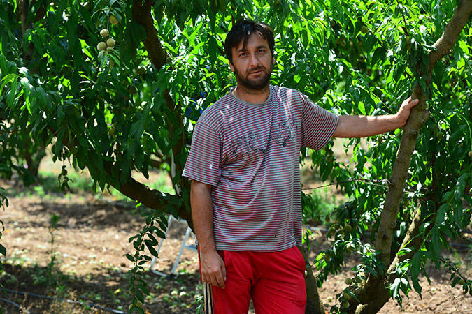 diaforetiko.gr : DSC 9654 Πρώτη φορά νέοι Έλληνες στα χωράφια για δουλειά! Οι αλλοδαποί φεύγουν, οι ντόπιοι έρχονται