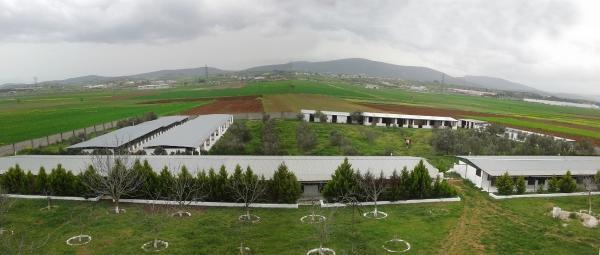 panoramic-1200px