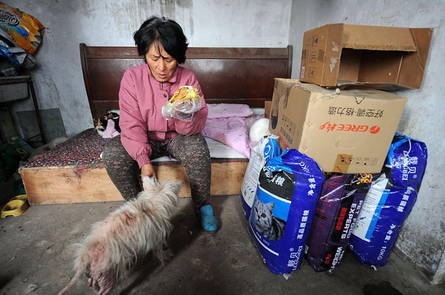 diaforetiko.gr : rescued dogs yulin dog meat festival china 13 Η συνταξιούχος που αγοράζει σκυλιά για να τα σώσει από τη σφαγή στο «Φεστιβάλ Σκυλίσιου Κρέατος» της Κίνας!