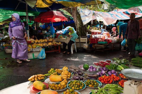 diaforetiko.gr : 100433360 Brunei.600x400 Δείτε τις 10 χώρες που δεν ξέρουν...τι θα πει εφορία! (Φωτογραφίες)