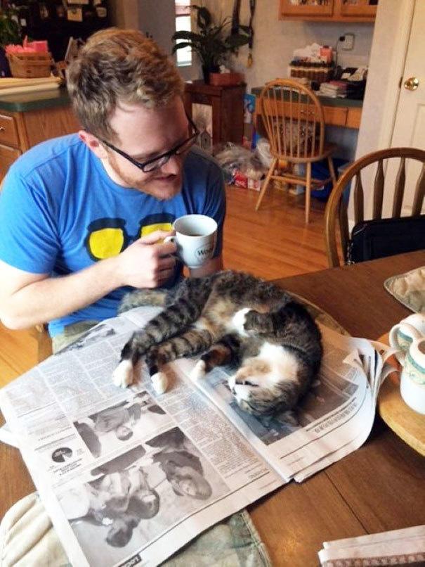 diaforetiko.gr : lifebuzz 16d7ef5745ae838aa787c639870488cc limit 2000 25 Αγενείς γάτες που δεν νοιάζονται αν είσαι απασχολημένος ή όχι…Η νο19 έχει ξεφύγει εντελώς!