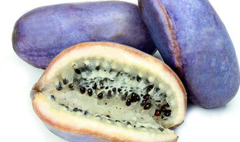 diaforetiko.gr : shutterstock 1617222141 10 περίεργα εξωτικά φρούτα που δεν είχατε ξανακούσει ποτέ.