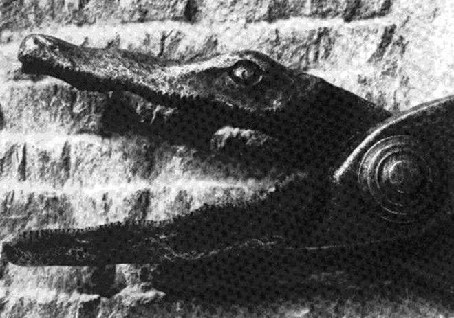 diaforetiko.gr : pic6 Οι 10 χειρότερες τεχνικές βασανισμού και θανάτου στην ανθρώπινη ιστορία