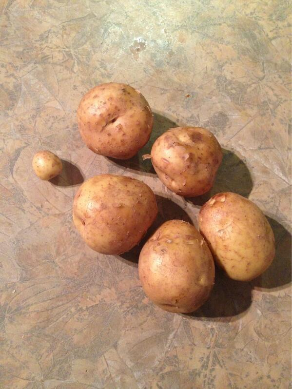 This husband was told to pick up six potatoes.